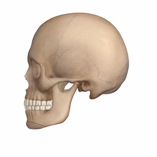 턱끝수술 전